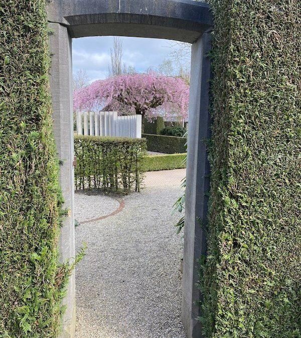 Wegdromen in je eigen Geheime Tuin